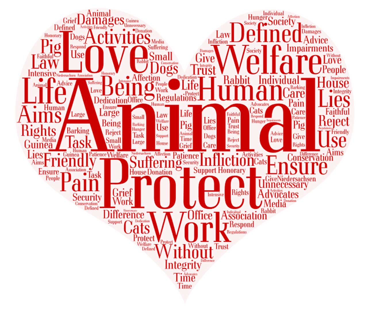 word cloud for animal welfare groups