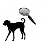 dog and magnifying glass