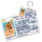 Dog Tag Drivers License