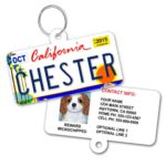 Dog Tag License Plate