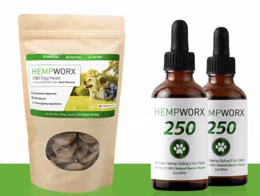 Photo of cbd oil and treats for dogs